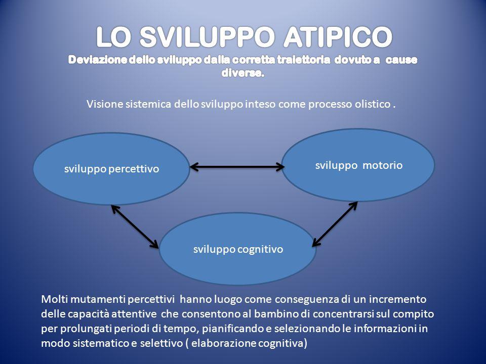 Visione sistemica dello sviluppo inteso come processo olistico. sviluppo percettivo sviluppo motorio sviluppo cognitivo Molti mutamenti percettivi han