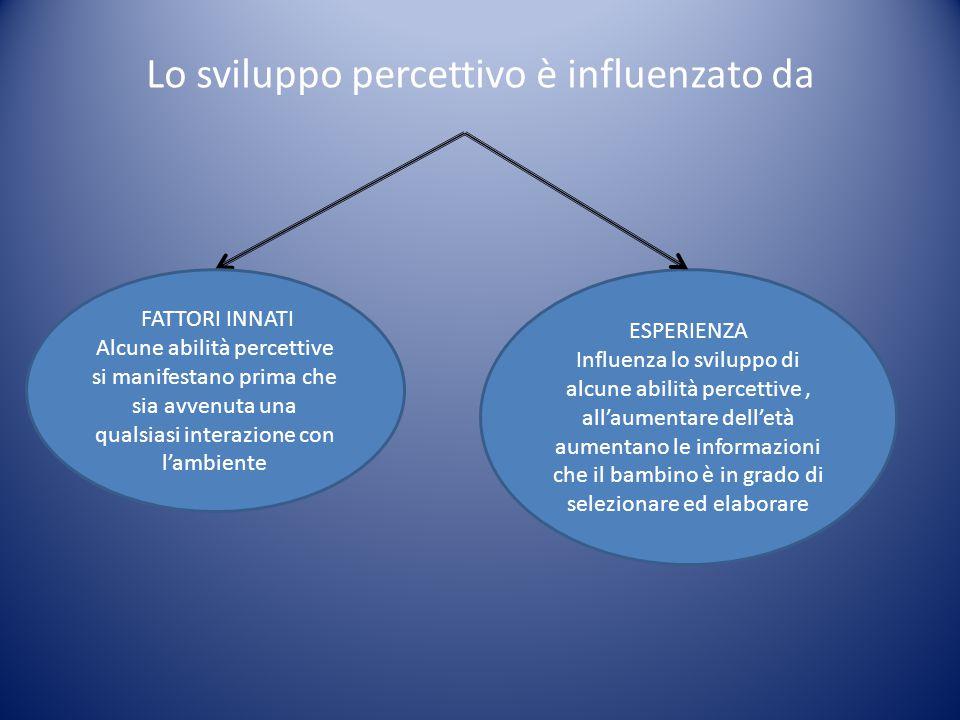 Lo sviluppo percettivo è influenzato da FATTORI INNATI Alcune abilità percettive si manifestano prima che sia avvenuta una qualsiasi interazione con l