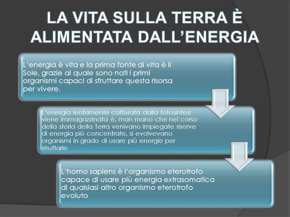  Migliorare l'efficienza e promuovere il risparmio e l'equità nei consumi energetici globali  Potenziare i programmi di produzione di energia alternativa da fonti rinnovabili (solare ed eolico)  Potenziare la produzione elettrica di natura nucleare  Informare i cittadini sui problemi ambientali  Educare i cittadini al risparmio energetico  Stabilizzare il livello demografico dei Paesi del Terzo Mondo