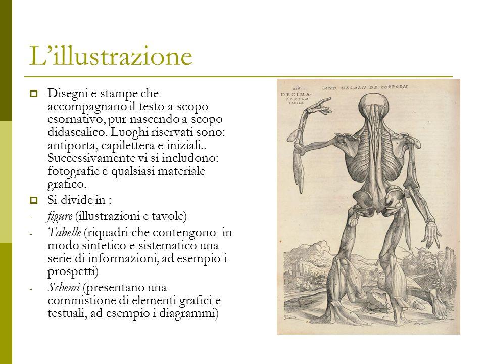 L'illustrazione  Disegni e stampe che accompagnano il testo a scopo esornativo, pur nascendo a scopo didascalico. Luoghi riservati sono: antiporta, c
