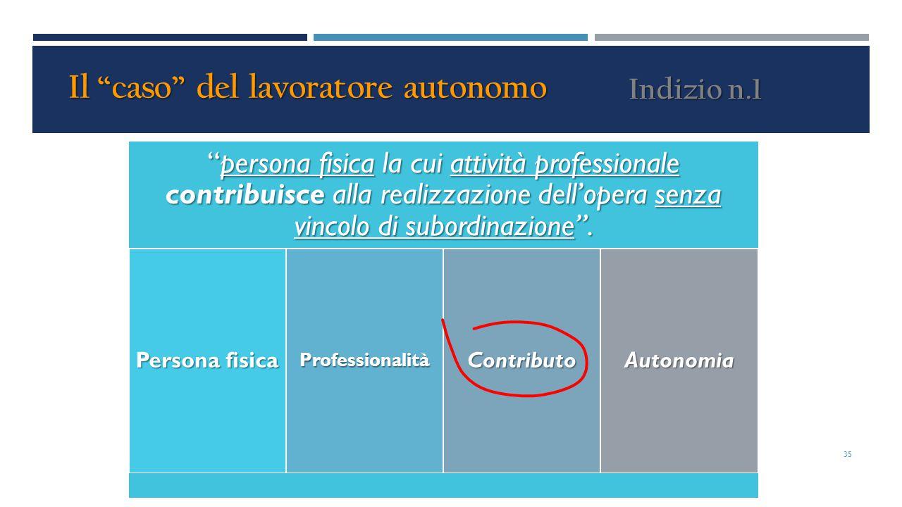"""""""persona fisica la cui attività professionale contribuisce alla realizzazione dell'opera senza vincolo di subordinazione"""". Persona fisica Professional"""