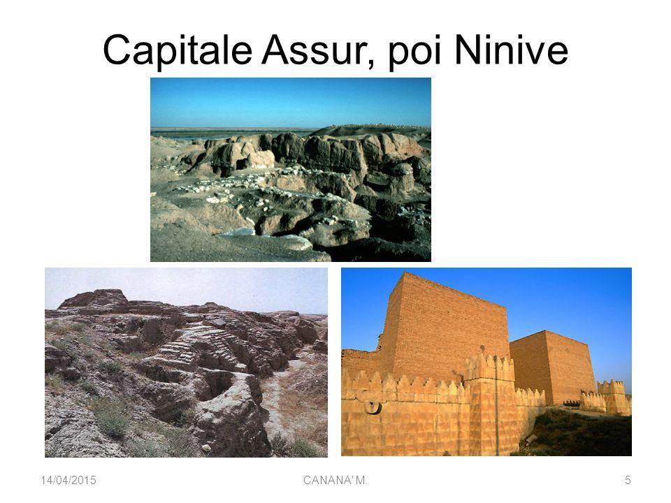 Capitale Assur, poi Ninive 14/04/20155CANANA' M.