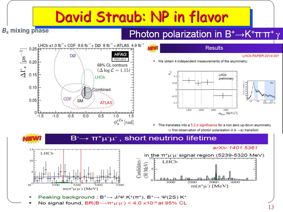 13 David Straub: NP in flavor