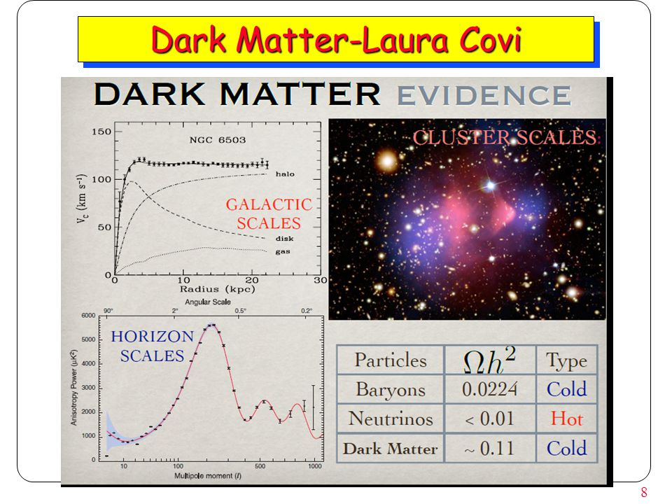 8 Dark Matter-Laura Covi