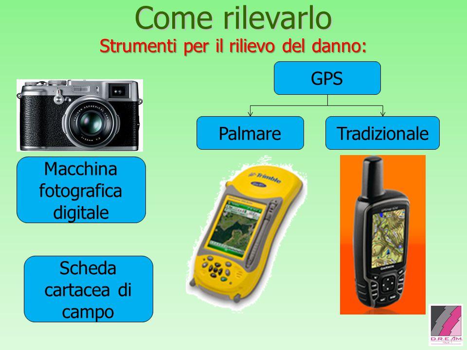 Come rilevarlo Strumenti per il rilievo del danno: Macchina fotografica digitale GPS PalmareTradizionale Scheda cartacea di campo