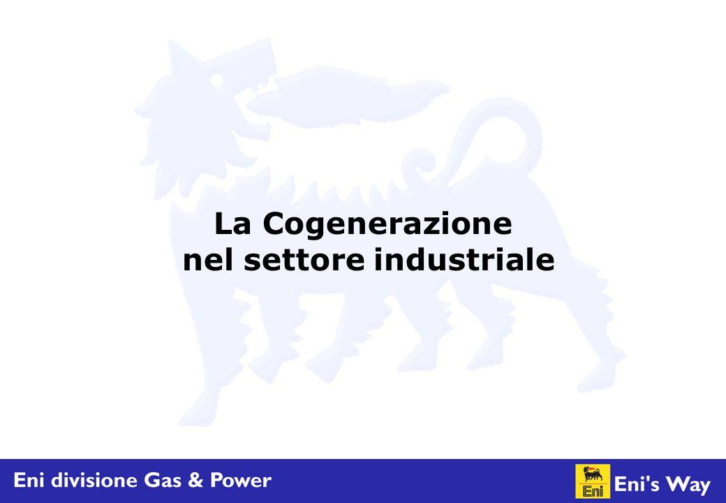 La Cogenerazione nel settore industriale