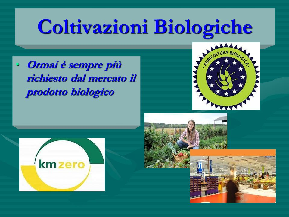 Coltivazioni Biologiche Ormai è sempre più richiesto dal mercato il prodotto biologicoOrmai è sempre più richiesto dal mercato il prodotto biologico