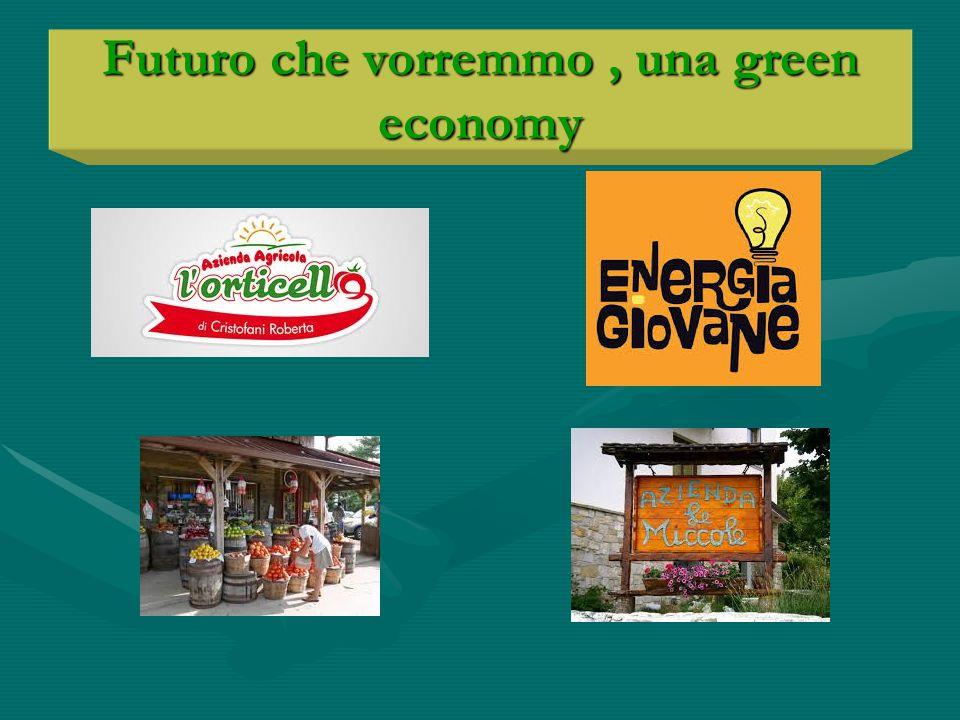 Futuro che vorremmo, una green economy