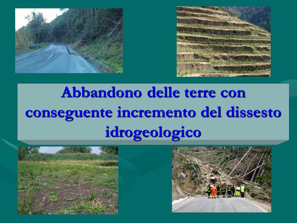 Abbandono delle terre con conseguente incremento del dissesto idrogeologico