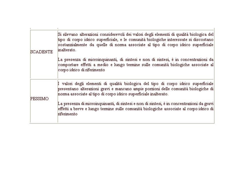Analisi per la valutazione dello stato chimico Colonna d'acqua Sedimenti Componenti biotiche Parametri di base Macrodescrittori utilizzati per la classificazione Parametri addizionali