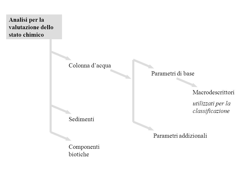 Analisi per la valutazione dello stato chimico Colonna d'acqua Sedimenti Componenti biotiche Parametri di base Macrodescrittori utilizzati per la clas