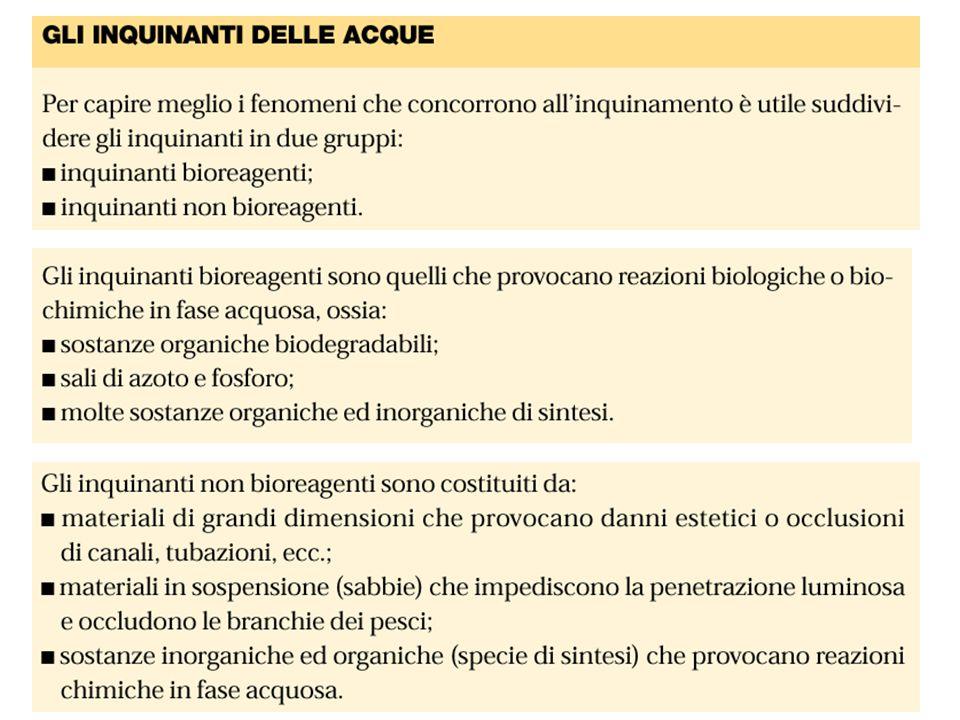 Effetti delle sostanze organiche biodegradabili Tossicità Effetti indiretti: eutrofizzazione, accumuli