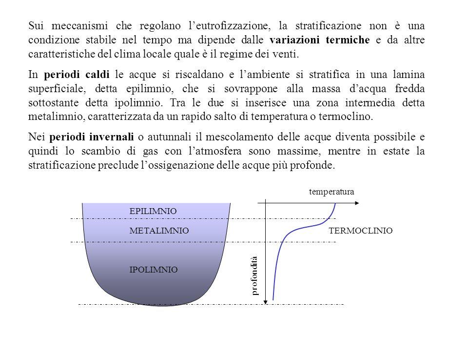 Sui meccanismi che regolano l'eutrofizzazione, la stratificazione non è una condizione stabile nel tempo ma dipende dalle variazioni termiche e da alt