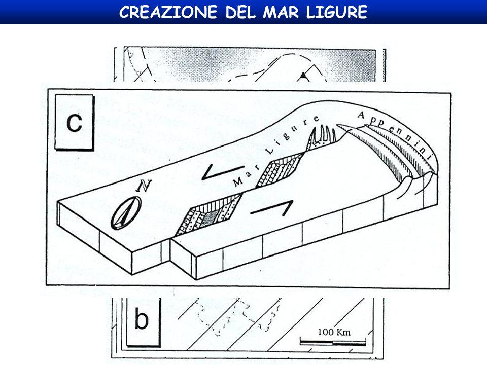 CREAZIONE DEL MAR LIGURE
