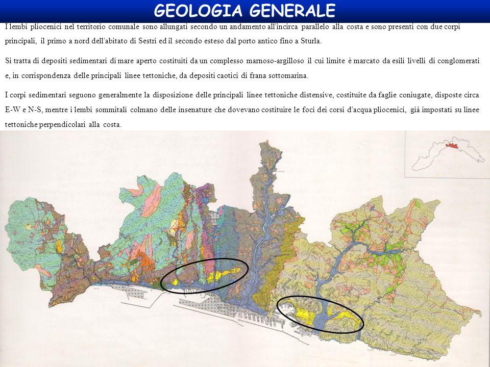 GEOLOGIA GENERALE I lembi pliocenici nel territorio comunale sono allungati secondo un andamento all'incirca parallelo alla costa e sono presenti con
