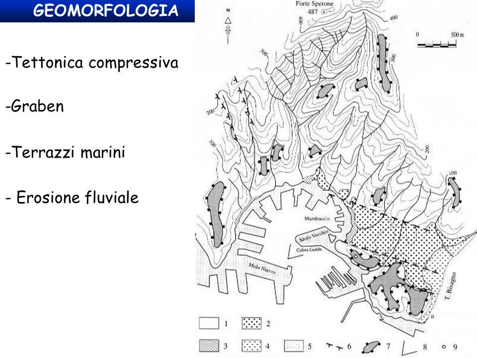 GEOMORFOLOGIA -Tettonica compressiva -Graben - Erosione fluviale -Terrazzi marini