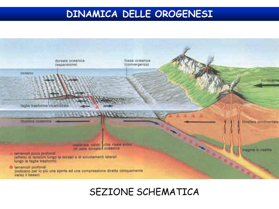 BILANCIO IDROLOGICO L'acqua meteorica piovuta in un determinato bacino idrografico in parte confluisce direttamente nel corso d'acqua (Ruscellamento), in parte si infiltra nel terreno (Infiltrazione) e in parte evapora o viene assorbita dalla vegetazione (Evapotraspirazione).