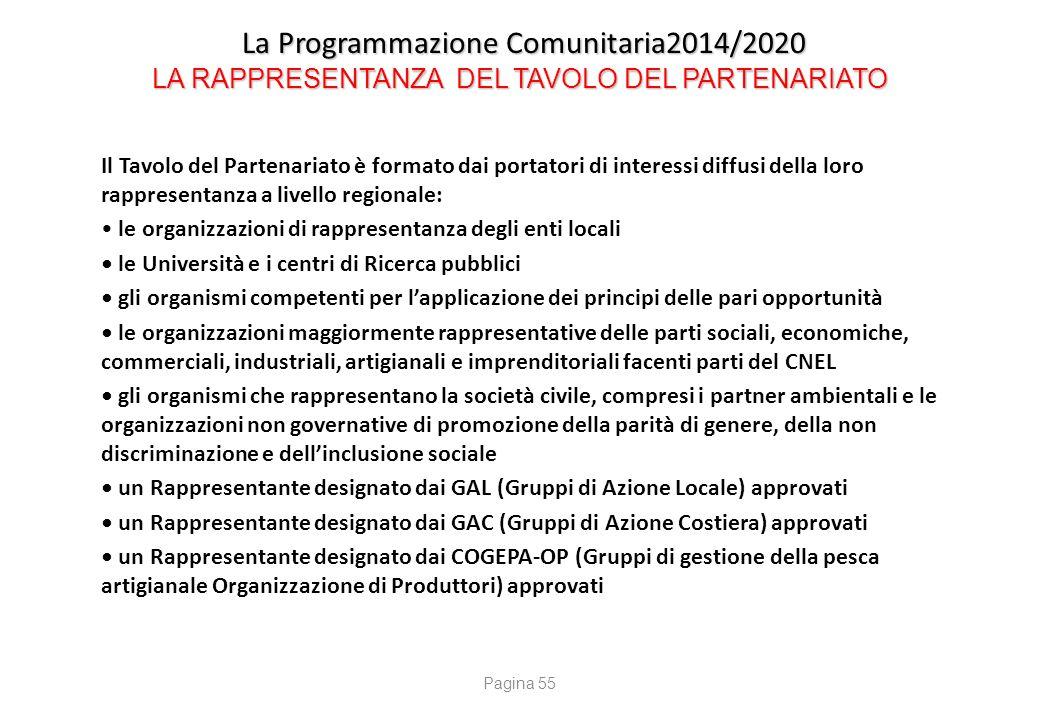 La Programmazione Comunitaria2014/2020 LA RAPPRESENTANZA DEL TAVOLO DEL PARTENARIATO La Programmazione Comunitaria2014/2020 LA RAPPRESENTANZA DEL TAVO