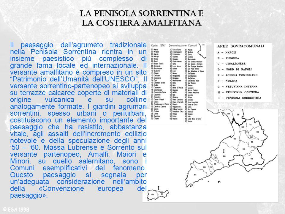 La penisola Sorrentina e la costiera amalfitana Il paesaggio dell'agrumeto tradizionale nella Penisola Sorrentina rientra in un insieme paesistico più