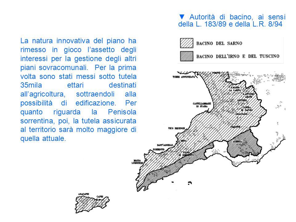 ▼Autorità di bacino, ai sensi della L. 183/89 e della L.R. 8/94 La natura innovativa del piano ha rimesso in gioco l'assetto degli interessi per la ge