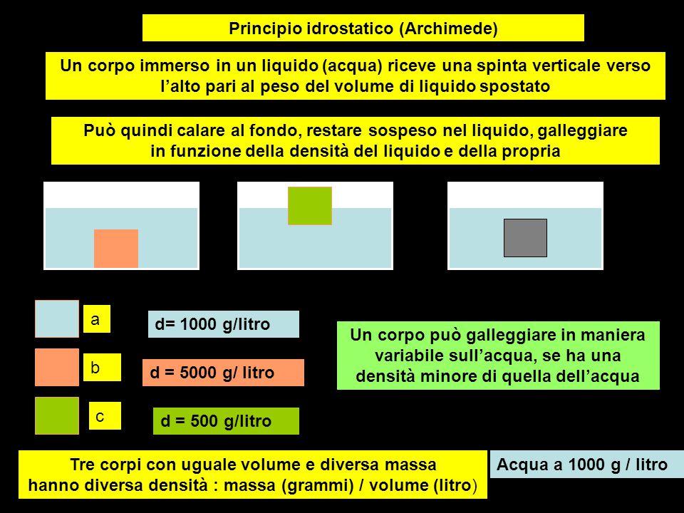 Principio idrostatico (Archimede) a b c Tre corpi con uguale volume e diversa massa hanno diversa densità : massa (grammi) / volume (litro) Acqua a 10