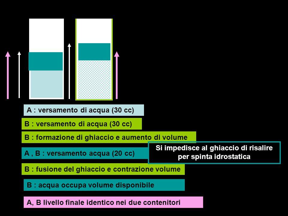 A B A : versamento di acqua (30 cc) B : versamento di acqua (30 cc) B : formazione di ghiaccio e aumento di volume A, B : versamento acqua (20 cc) B :