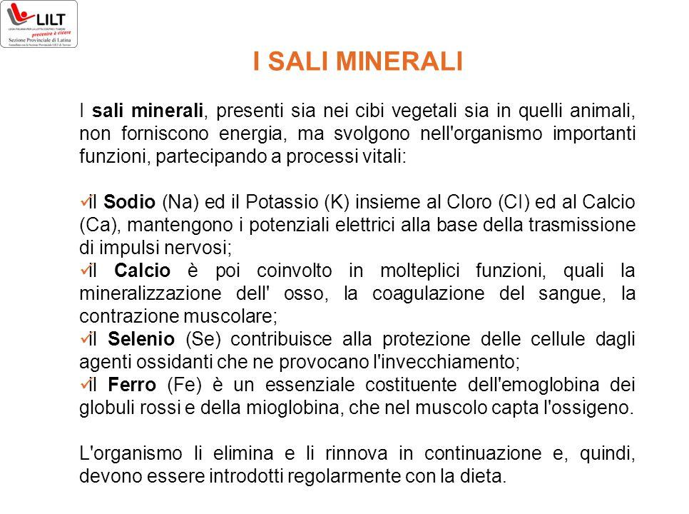 I SALI MINERALI I sali minerali, presenti sia nei cibi vegetali sia in quelli animali, non forniscono energia, ma svolgono nell'organismo importanti f