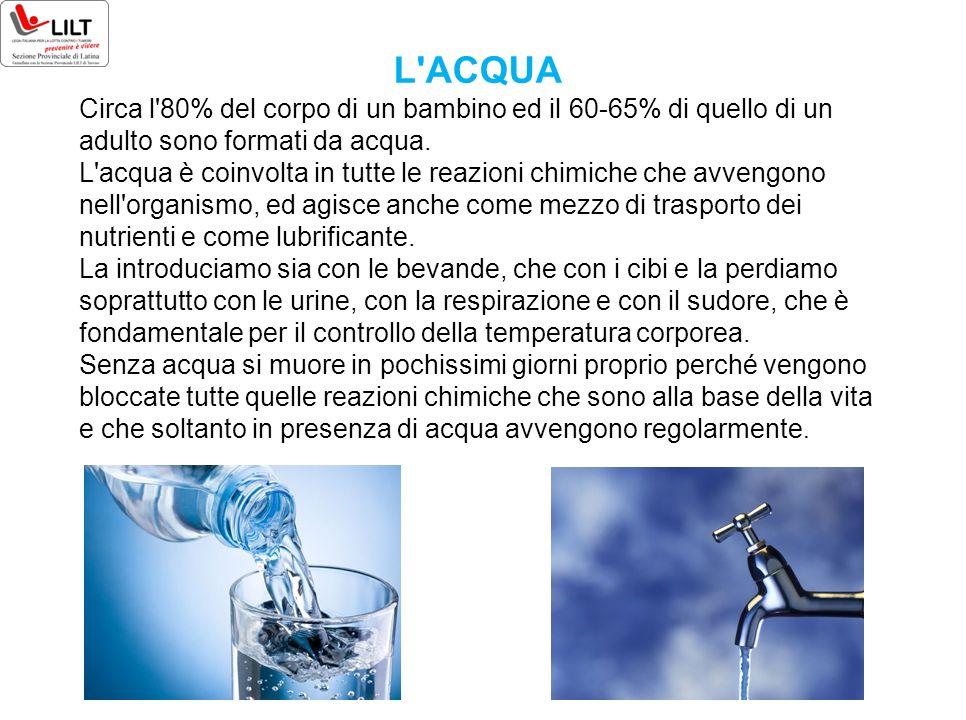 L'ACQUA Circa l'80% del corpo di un bambino ed il 60-65% di quello di un adulto sono formati da acqua. L'acqua è coinvolta in tutte le reazioni chimic