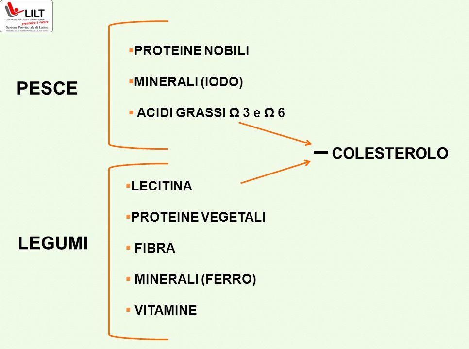 PESCE  PROTEINE NOBILI  MINERALI (IODO)  ACIDI GRASSI Ω 3 e Ω 6 LEGUMI  LECITINA  PROTEINE VEGETALI  FIBRA  MINERALI (FERRO)  VITAMINE COLESTE