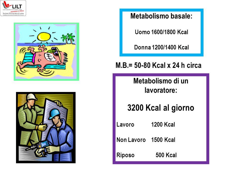 Metabolismo basale: Uomo 1600/1800 Kcal Donna 1200/1400 Kcal Metabolismo di un lavoratore: 3200 Kcal al giorno Lavoro 1200 Kcal Non Lavoro 1500 Kcal R