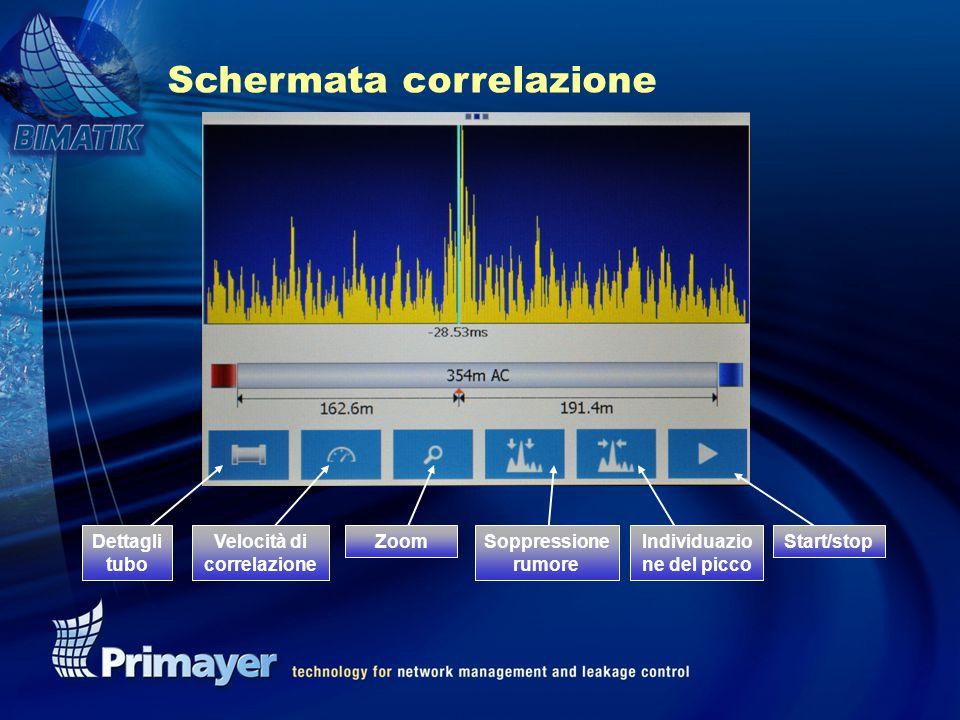 Schermata correlazione Dettagli tubo Start/stopIndividuazio ne del picco Soppressione rumore ZoomVelocità di correlazione
