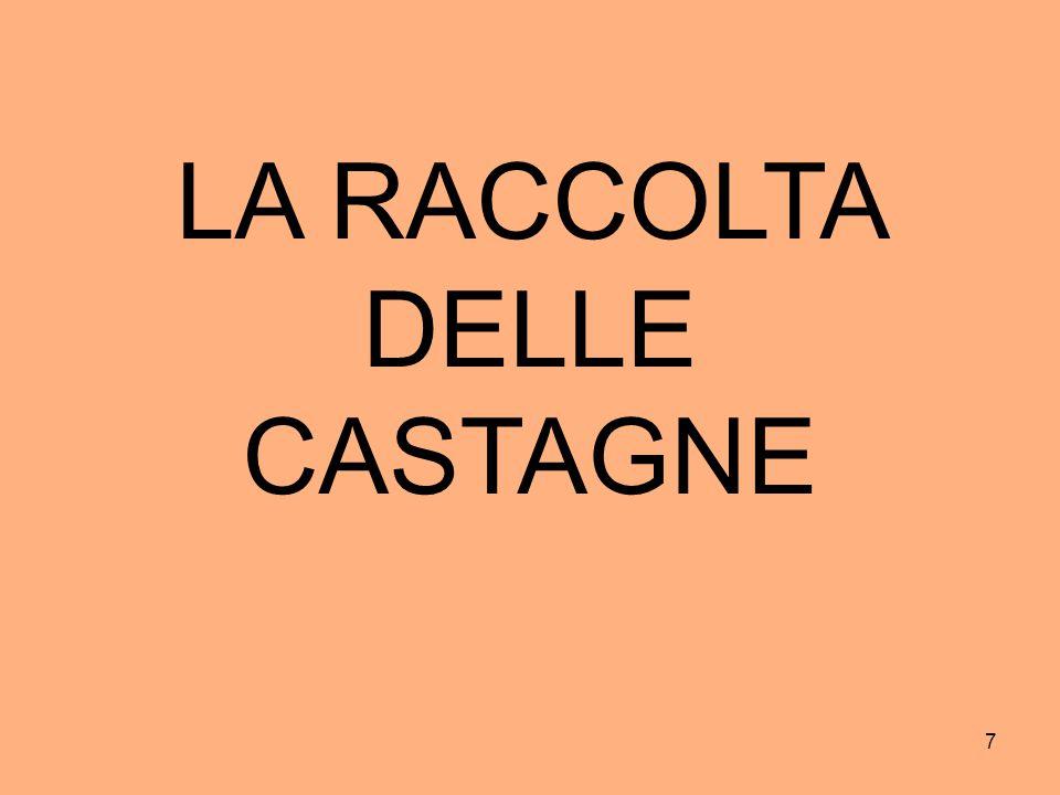 7 LA RACCOLTA DELLE CASTAGNE