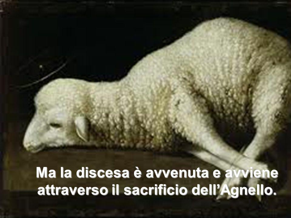 6. Ma la discesa è avvenuta e avviene attraverso il sacrificio dell'Agnello.