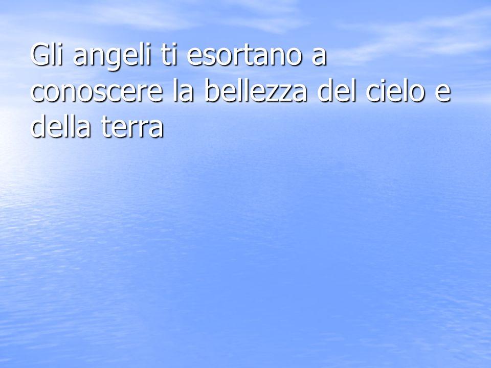 Gli angeli ti esortano a credere in dio