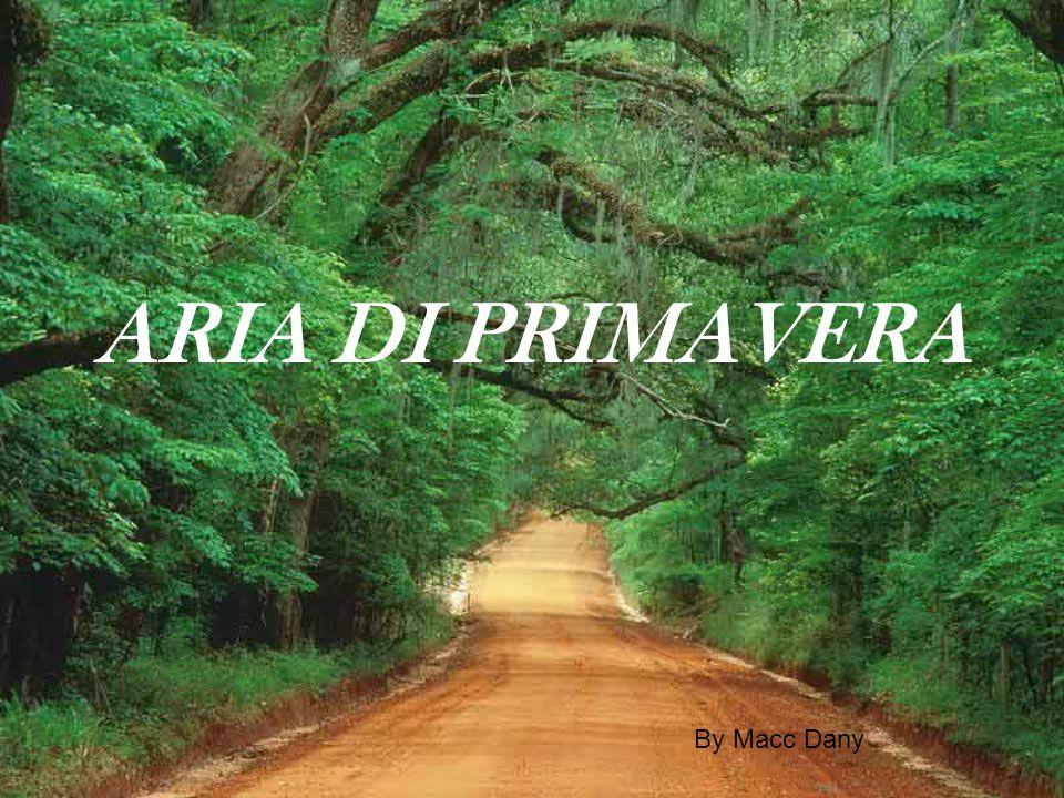ARIA DI PRIMAVERA By Macc Dany