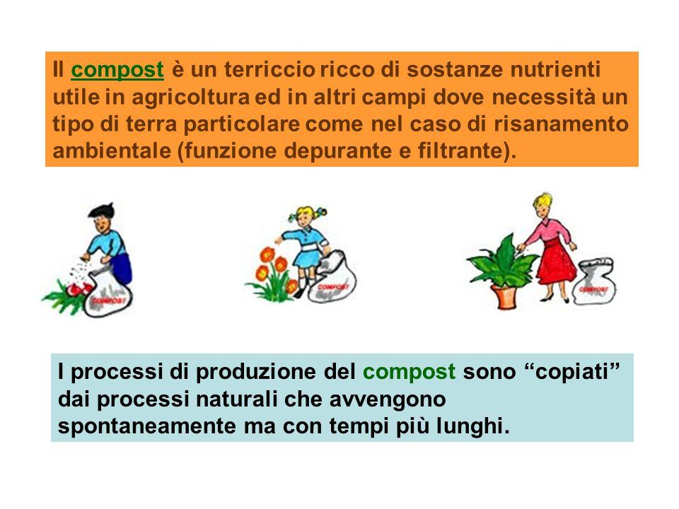 """I processi di produzione del compost sono """"copiati"""" dai processi naturali che avvengono spontaneamente ma con tempi più lunghi. Il compost è un terric"""