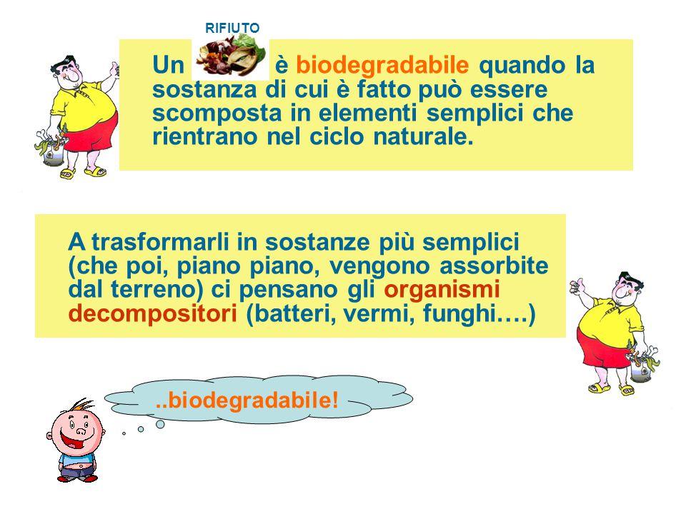 Un è biodegradabile quando la sostanza di cui è fatto può essere scomposta in elementi semplici che rientrano nel ciclo naturale. A trasformarli in so
