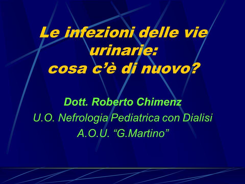"""Le infezioni delle vie urinarie: cosa c'è di nuovo? Dott. Roberto Chimenz U.O. Nefrologia Pediatrica con Dialisi A.O.U. """"G.Martino"""""""