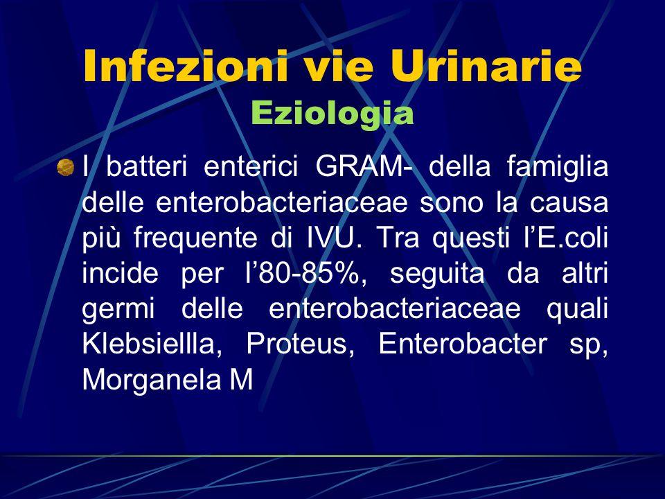 Infezioni vie Urinarie Eziologia I batteri GRAM+ quali: Enterococcus, Pseudomonas Aer., Staphylococcus e Streptococcus gruppo B incidono in misura significativamente minore.
