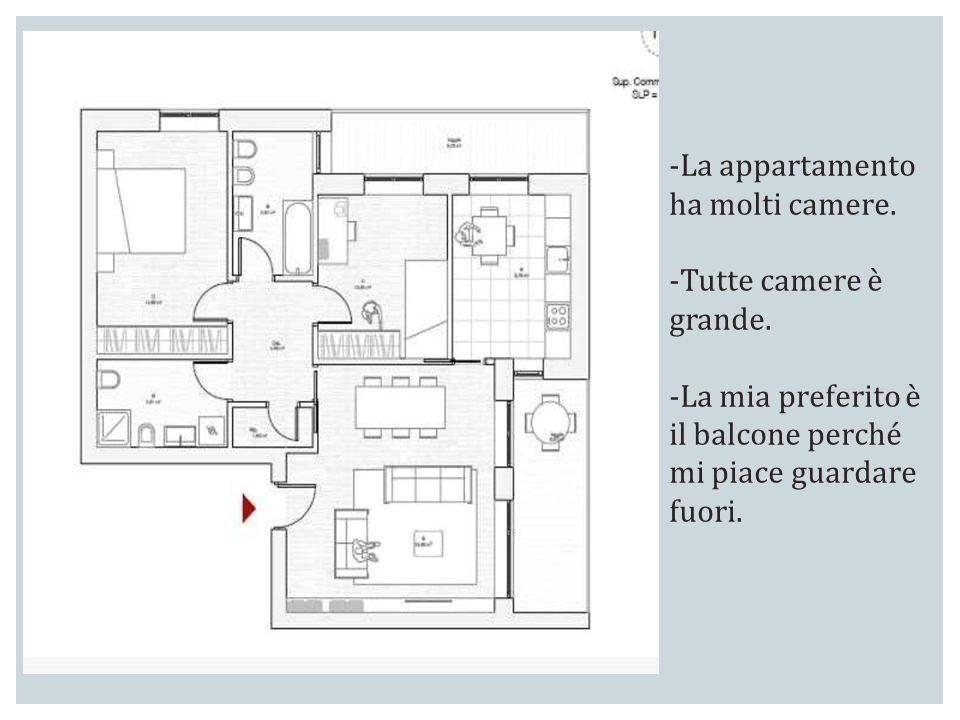 -La appartamento ha molti camere. -Tutte camere è grande. -La mia preferito è il balcone perché mi piace guardare fuori.