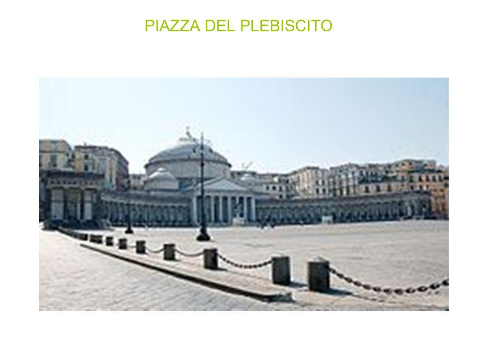 Ubicata nel centro storico, tra il lungomare e via Toledo, con una superficie di circa 25 000 metri quadrati la piazza si presenta come una delle più grandi della città e d Italia e per questo è quella più utilizzata per le grandi manifestazioni.