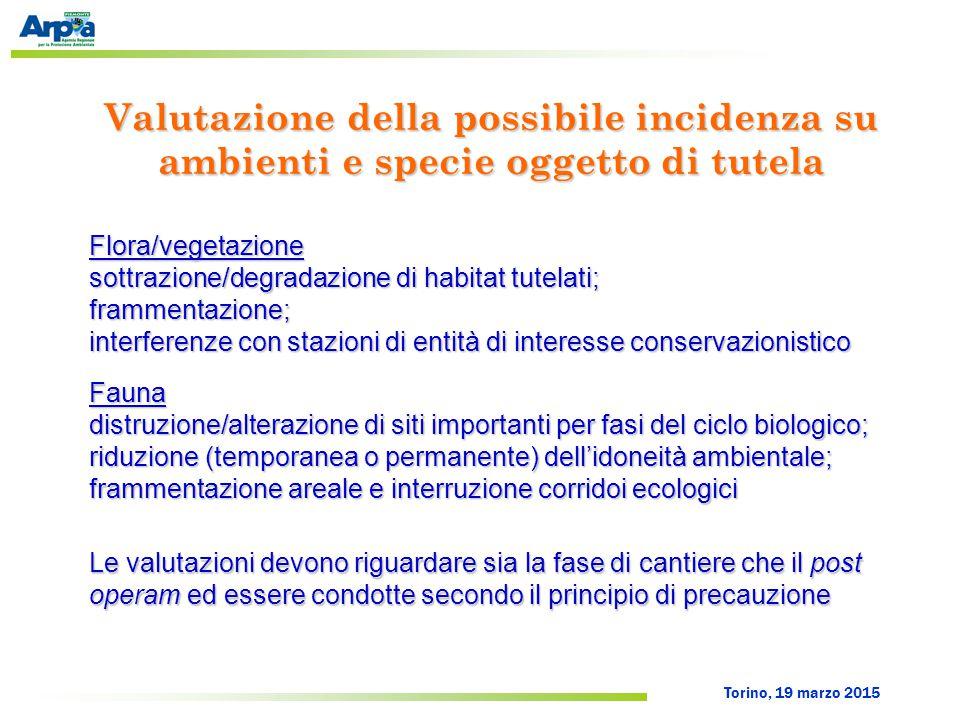 Torino, 19 marzo 2015 Valutazione della possibile incidenza su ambienti e specie oggetto di tutela Flora/vegetazione sottrazione/degradazione di habit