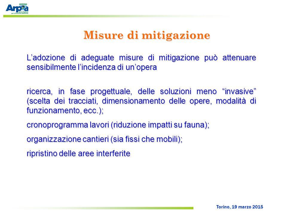 Torino, 19 marzo 2015 Misure di mitigazione L'adozione di adeguate misure di mitigazione può attenuare sensibilmente l'incidenza di un'opera ricerca,