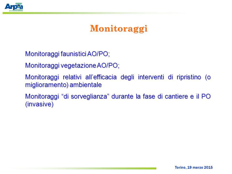 Torino, 19 marzo 2015 Monitoraggi Monitoraggi faunistici AO/PO; Monitoraggi vegetazione AO/PO; Monitoraggi relativi all'efficacia degli interventi di