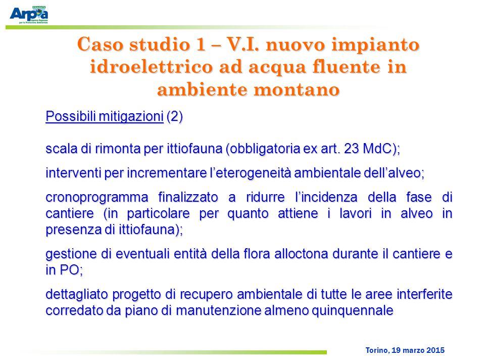 Torino, 19 marzo 2015 Possibili mitigazioni (2) scala di rimonta per ittiofauna (obbligatoria ex art. 23 MdC); interventi per incrementare l'eterogene