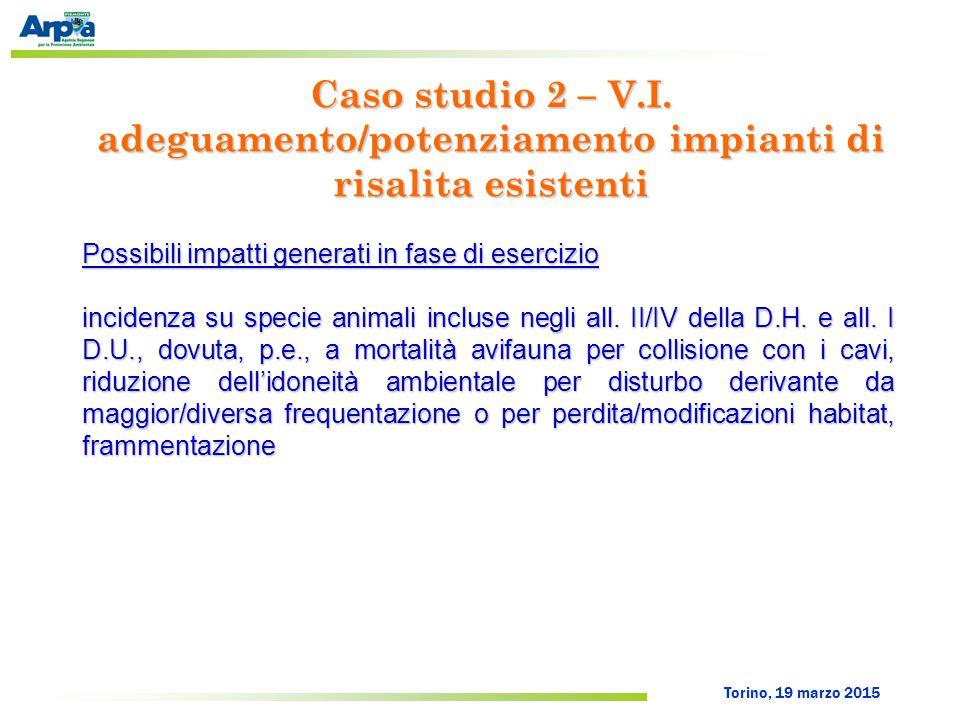 Torino, 19 marzo 2015 Possibili impatti generati in fase di esercizio incidenza su specie animali incluse negli all. II/IV della D.H. e all. I D.U., d
