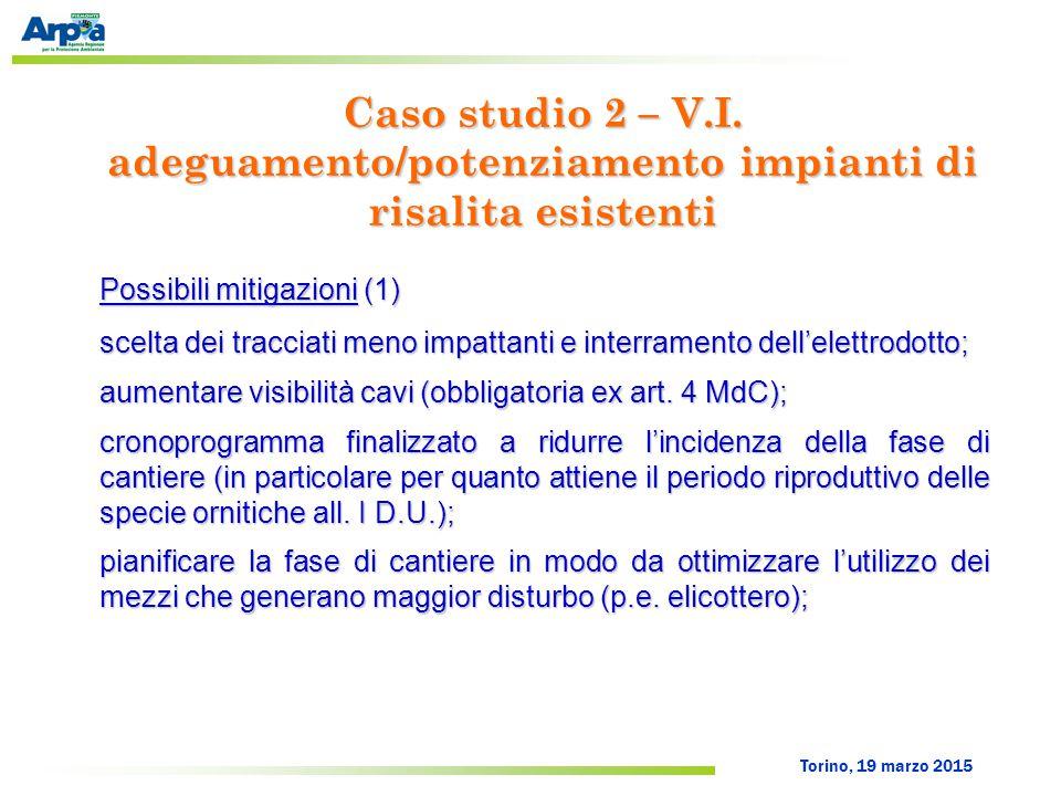 Torino, 19 marzo 2015 Possibili mitigazioni (1) scelta dei tracciati meno impattanti e interramento dell'elettrodotto; aumentare visibilità cavi (obbl