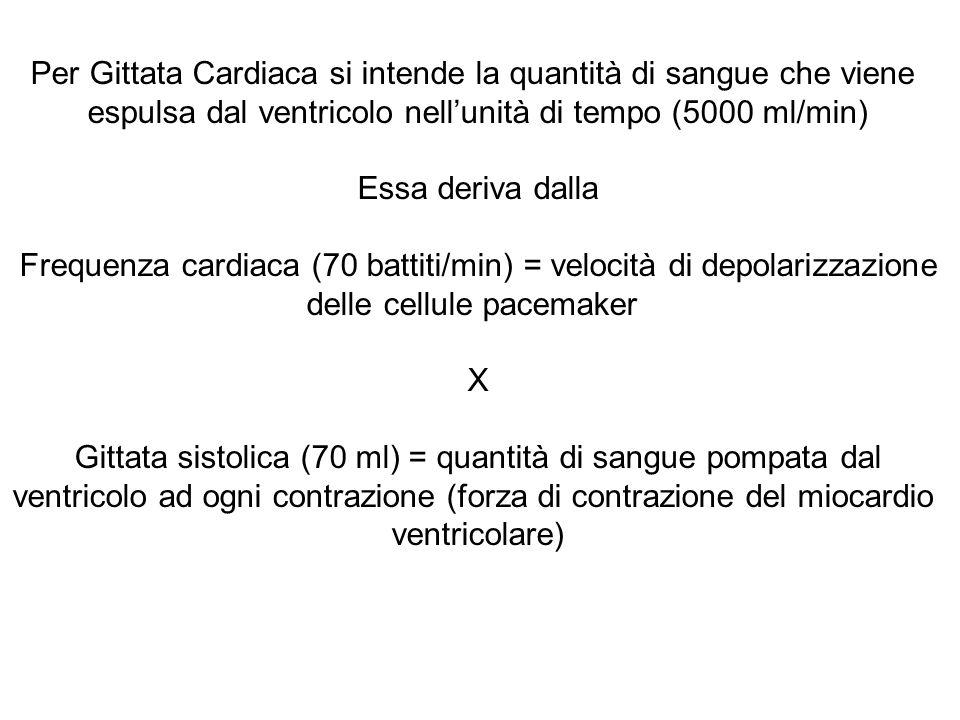 Per Gittata Cardiaca si intende la quantità di sangue che viene espulsa dal ventricolo nell'unità di tempo (5000 ml/min) Essa deriva dalla Frequenza cardiaca (70 battiti/min) = velocità di depolarizzazione delle cellule pacemaker X Gittata sistolica (70 ml) = quantità di sangue pompata dal ventricolo ad ogni contrazione (forza di contrazione del miocardio ventricolare)