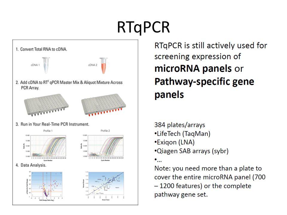 RTqPCR