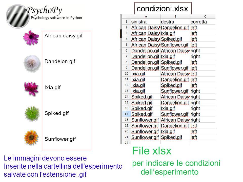 condizioni.xlsx African daisy.gif Dandelon.gif Ixia.gif Spiked.gif Sunflower.gif File xlsx per indicare le condizioni dell'esperimento Le immagini dev